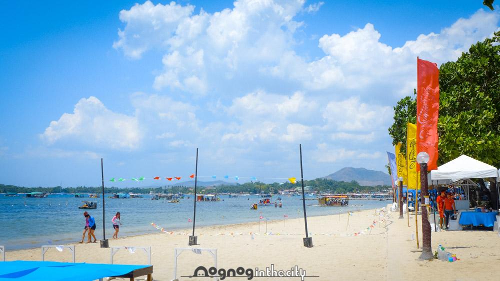 how to go to matabungkay beach resort